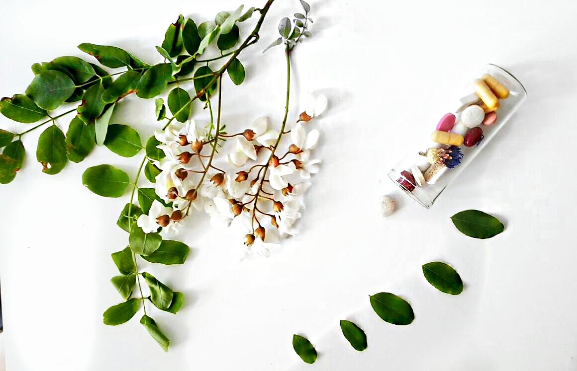 Farmacia-verde-flori-de-salcam